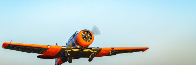 T-6 Texan South African Air Force Harvard Picture